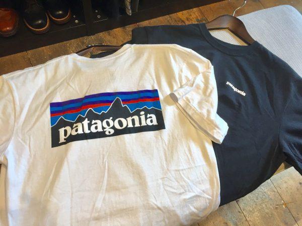 Patagonia パタゴニア Tシャツ